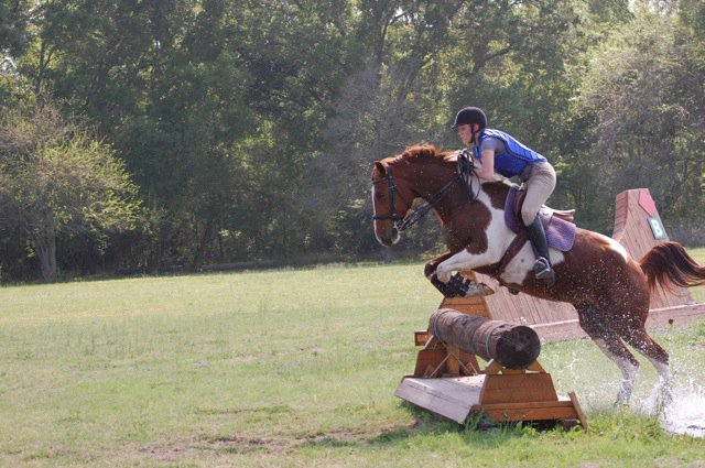 post-junior years cross country paint horse