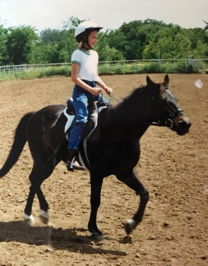 quarter horse cross black pony