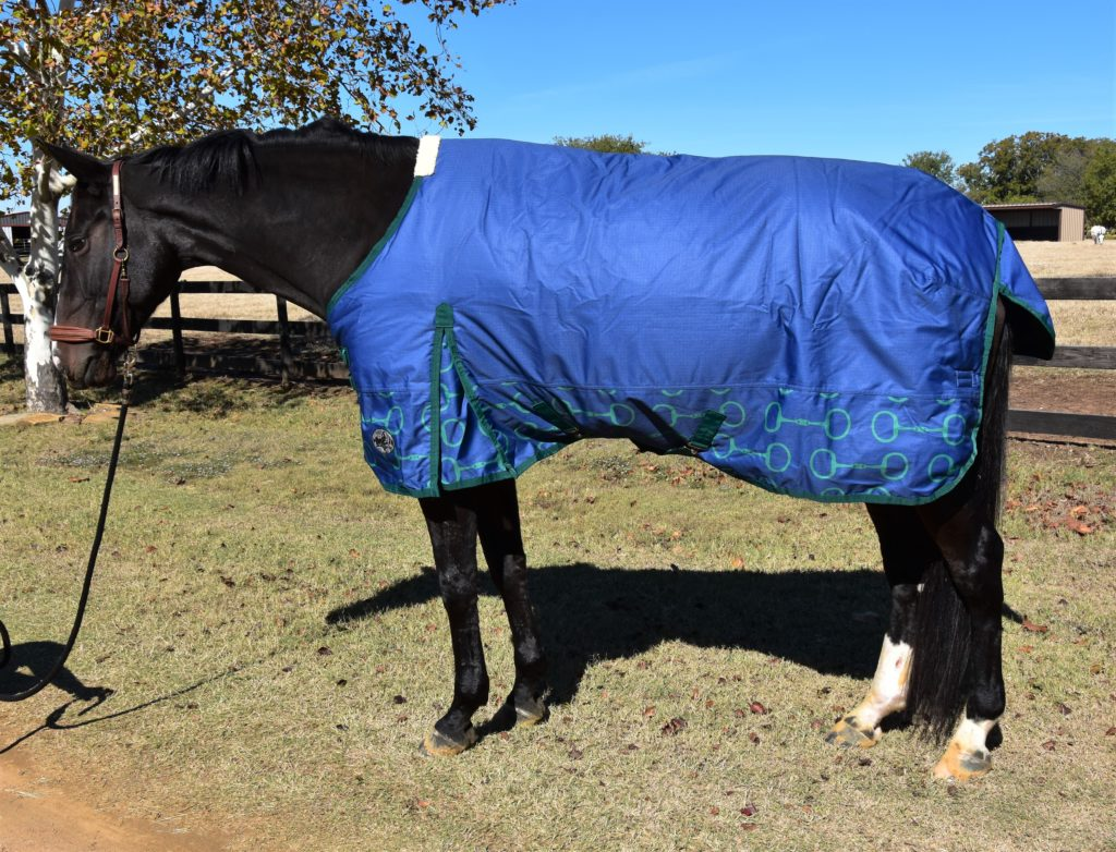 Jeffers Expressions Blanket Review
