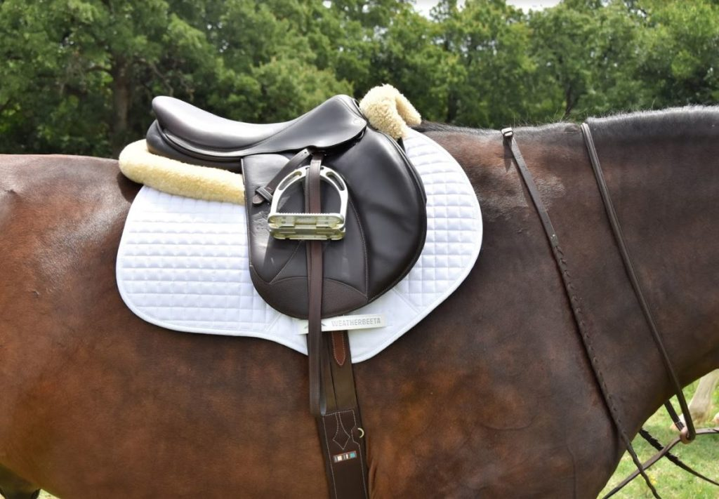Weatherbeeta Saddle Pad Review